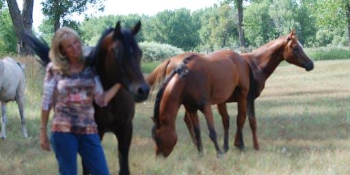 Equine Empowerment 101 Saturdays
