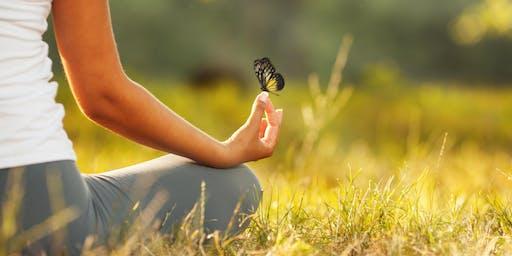 Walking Forest Meditation & Yoga in the Park