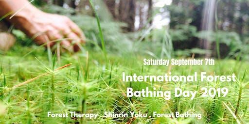 International Forest Bathing Day Walk 2019