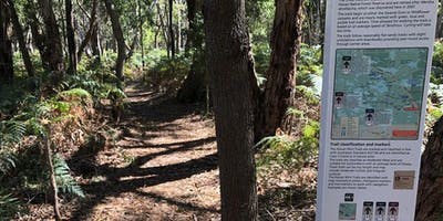 Mt Gambier Weekend Walks for Women - Honan Mint Trail 8.30am