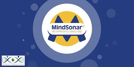 Understanding: Language and Behaviour Profiling and MindSonar