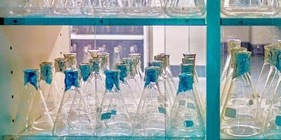 NECTA Drug Development Meeting 2020 - Beyond the Checkpoint