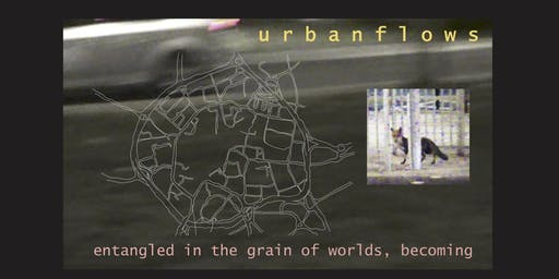 urbanflows: entangled in the grain of worlds, becoming
