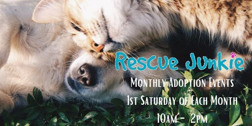 Rescue Junkie Monthly Adoption Events