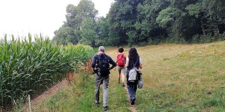 """So,29.09.19 Wanderdate """"Single Wandern Exotenwald, romantische Burgen für 25-49J"""" Tickets"""