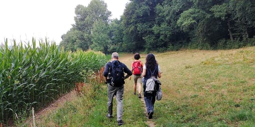 """So,29.09.19 Wanderdate """"Single Wandern Exotenwald, romantische Burgen für 25-49J"""""""