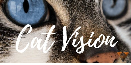 Cat Vision B: Jagen, eten en drinken tickets