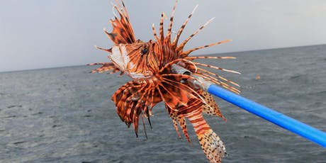 Pensacola Lionfish Classic tickets