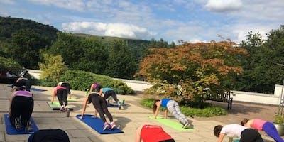 Court Yard Fitness - Hatha Yoga
