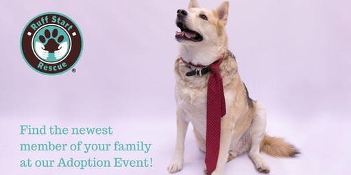 Blaine Petsmart Adoption Day Event