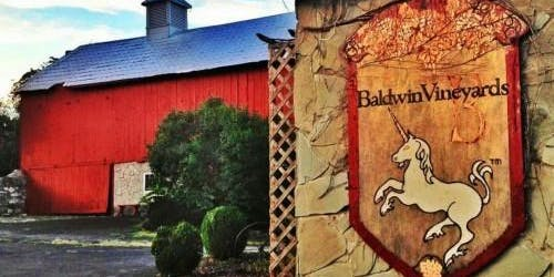 All You Can Eat Pizza Night at Baldwin Winery