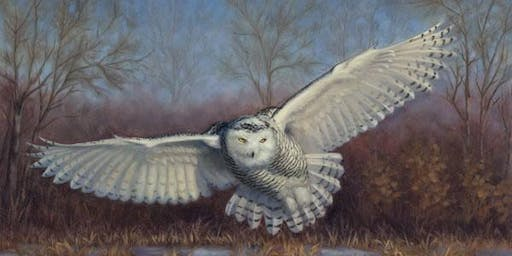 Painting Wildlife in the Winter Landscape with artist Molly Sims