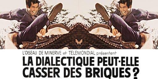 Film Screening: René Vienet:La dialectique peut-elle casser des briques?