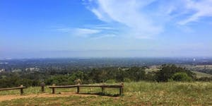 TAITA's Aug 24th Hiking & Lunch: Change Events =>...