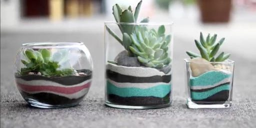 Succulents and Sand