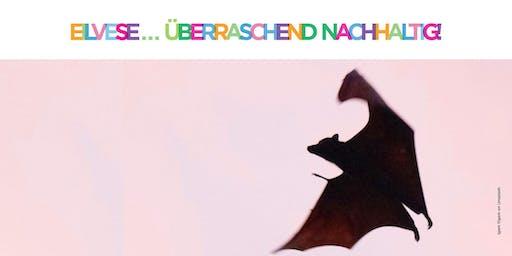 Nachhaltigkeits-Wochenende in Eilvese | Bat Night