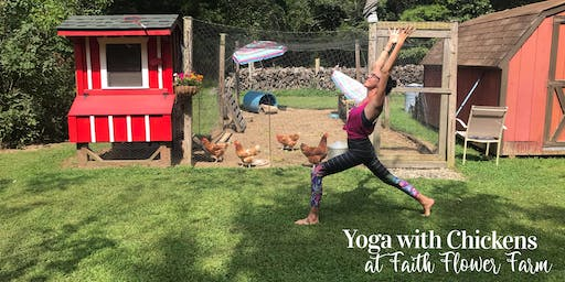 Yoga with Chickens