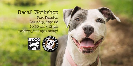 Off-Leash Recall Workshop