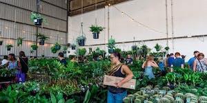 Brisbane - Huge Indoor Plant Warehouse Sale - Rumble...