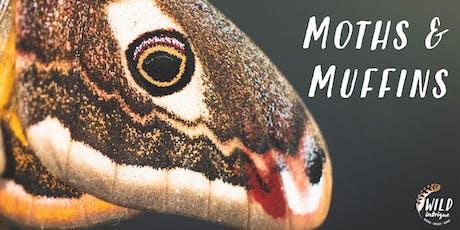Moths & Muffins Morning | Racy Ghyll Farm tickets