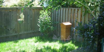 There is a buzz around Bayswater...a walk tour of backyard beekeepers