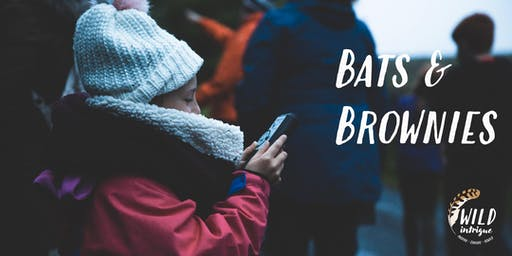 Bats & Brownies | Racy Ghyll Farm