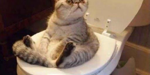 SAYMO Cat Show with Joe Kleon