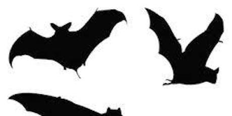 Bat talk and walk tickets