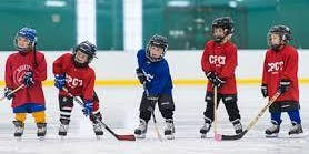 FREE Special Ice Hockey and Skating Clinics