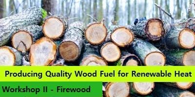 Half Day Workshop on Producing Quality Wood Fuel - Co Limerick