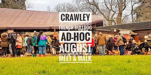 Crawley French Bulldog Ad-hoc August Meet & Walk