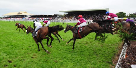 Horse Welfare Conference Listowel Races 2019 tickets