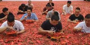 Shanti Hot Pepper Fest 2019