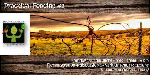 Practical Fencing - No. 2