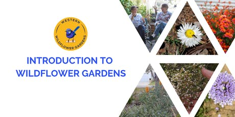 Introduction to Wildflower Gardens tickets