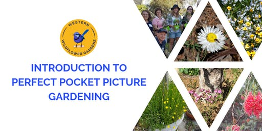 Verge Garden Designs - Perfect Pocket Picture Gardening