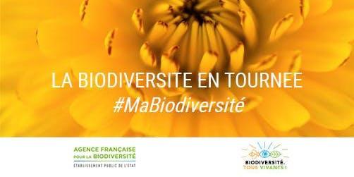 Espaces d'expression citoyenne sur la biodiversité - Festival d'Aurillac