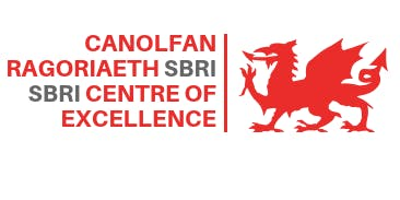 SBRI Centre of Excellence 'Health Challenges for Wales' 2019/2020
