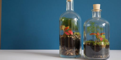 Vegan Feast & Terrarium Workshop