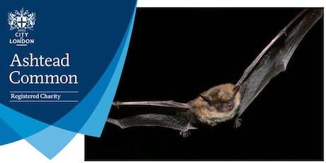 Bat walk - Ashtead Common  tickets