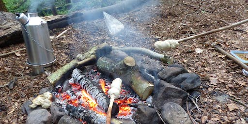 Woodland Management with the Deneholme Woods volunteer group