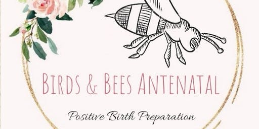 4 Week Antenatal Workshop