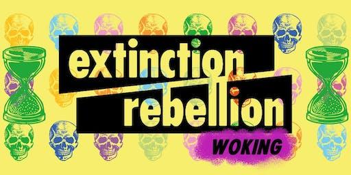 Extinction Rebellion Woking