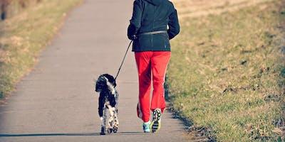 Samen sporten met je hond: lopen of work-out
