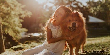 Kind en hond samen veilig op weg tickets