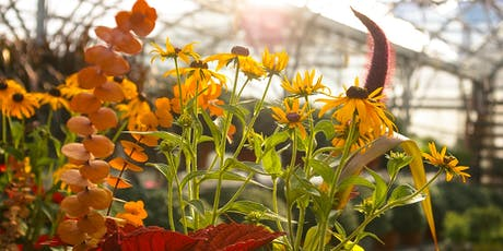 Fall Container Workshop tickets