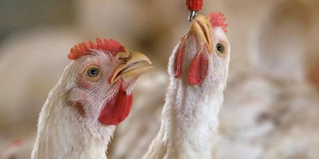 Poultry Growers Meeting - Water Quality and Broiler Welfare* tickets