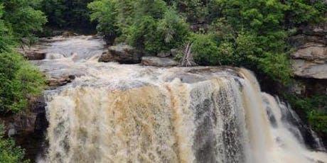 Waterfalls of Wellness tickets