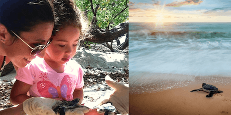 Strengthening family bonds: volunteering, cultural immersion, & beach time tickets