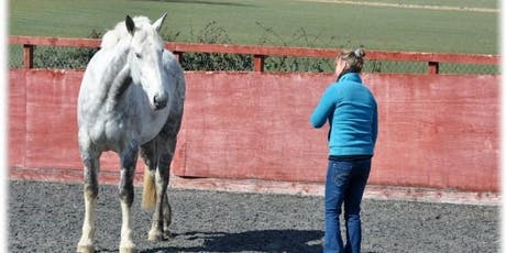 Equine Assisted Ireland Seminar tickets